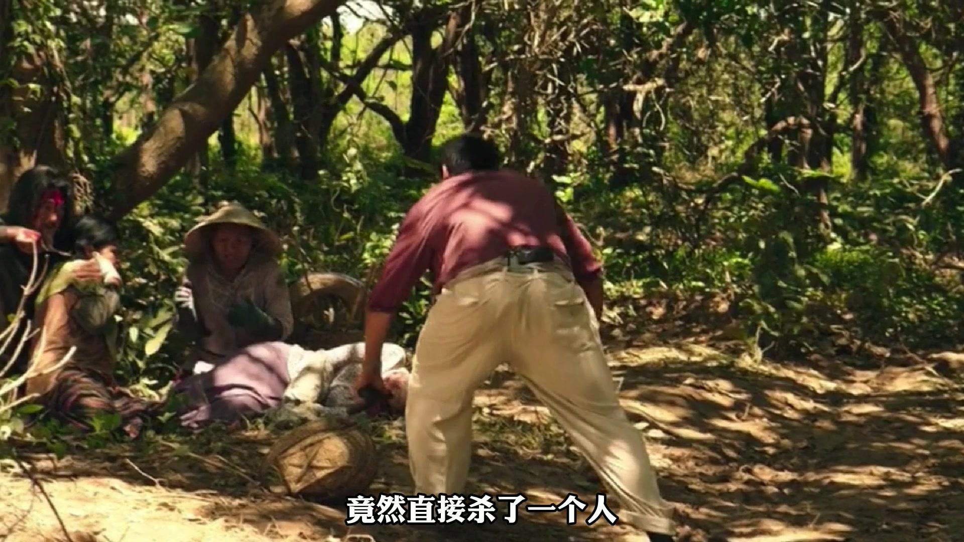 真实故事改编《湄公河行动》