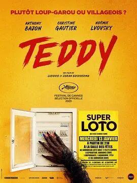 泰迪2021