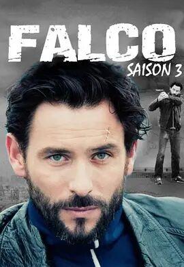最后的警察(法国版)第三季