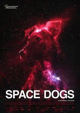 太空狗2019